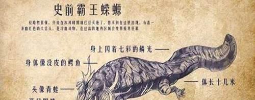 方舟自创生物:霸王蝾螈_WWW.XUNWANGBA.COM
