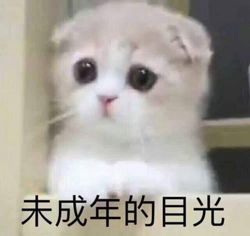 巨人族的新娘,漫画,动漫_WWW.XUNWANGBA.COM
