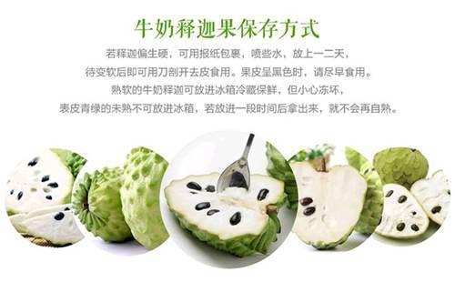 探秘世界上最甜的水果_WWW.XUNWANGBA.COM