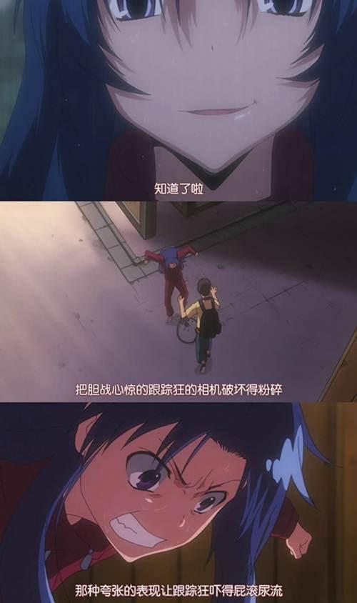 (动画研究-2)龙与虎的时代 配角也曾焕发光彩_WWW.XUNWANGBA.COM