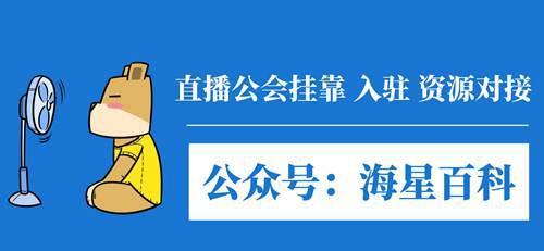 网易云直播公会的详细政策_WWW.XUNWANGBA.COM