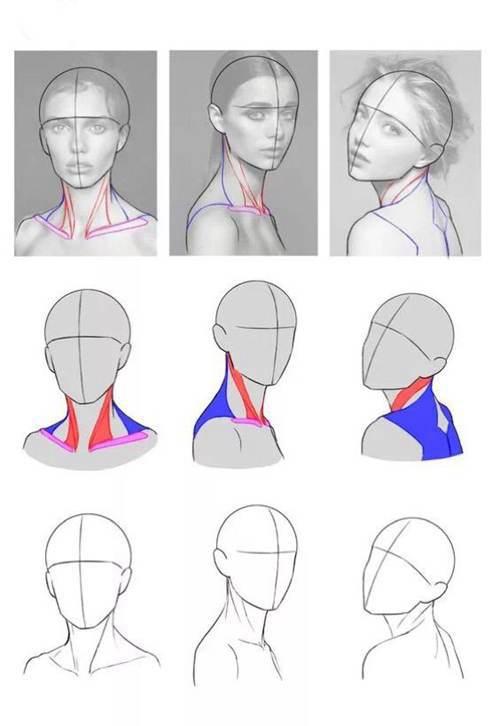 初学者如何自学素描?人体入门基础素描教程,绘画小白(收藏)_WWW.XUNWANGBA.COM