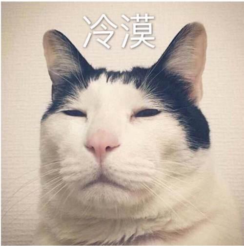 一时瑜亮_WWW.XUNWANGBA.COM