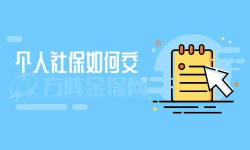 个人社保如何交,我来教你_WWW.XUNWANGBA.COM