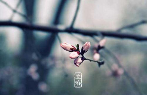 立春是春天的开始吗 立春是不是就是春天_WWW.XUNWANGBA.COM