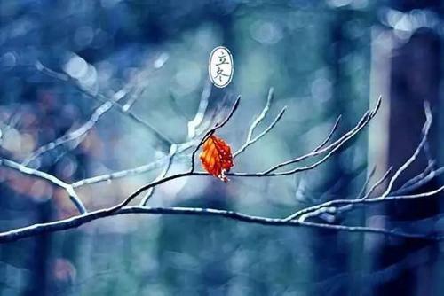 立冬是几月几号 什么时候立冬 立冬是几月几日_WWW.XUNWANGBA.COM
