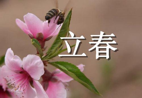 立春需要注意什么 立春要注意哪些事项_WWW.XUNWANGBA.COM
