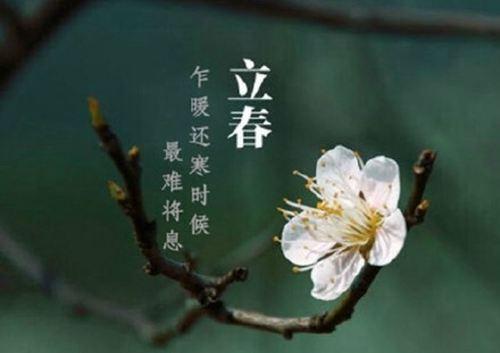 立春适合吃什么水果 立春要吃什么水果 立春吃什么水果好_WWW.XUNWANGBA.COM