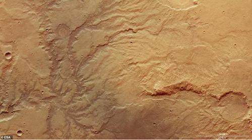 科学家发现金星有生命存在可能 除了地球还有哪个星球有生命_WWW.XUNWANGBA.COM