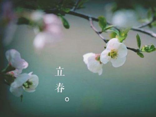 立春当天吃什么传统食物 立春有什么传统食物_WWW.XUNWANGBA.COM