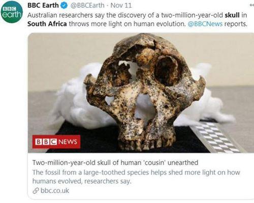 南非发现200万年前头骨化石 化石是怎么形成的_WWW.XUNWANGBA.COM