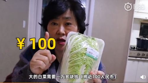韩国大妈吐槽白菜比中国贵10倍 韩国的白菜为什么那么贵_WWW.XUNWANGBA.COM