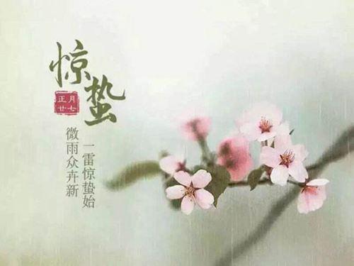 惊蛰节气的含义 惊蛰是什么意思_WWW.XUNWANGBA.COM