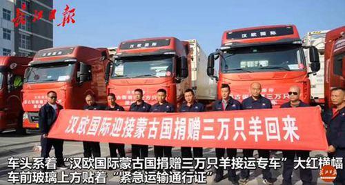 1只羊加工后正运往武汉 蒙古赠送的3万只羊怎么处理的_WWW.XUNWANGBA.COM