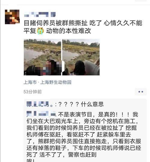 饲养员遭熊攻击身亡 上海动物园熊吃人事件 上海动物园事故不断_WWW.XUNWANGBA.COM