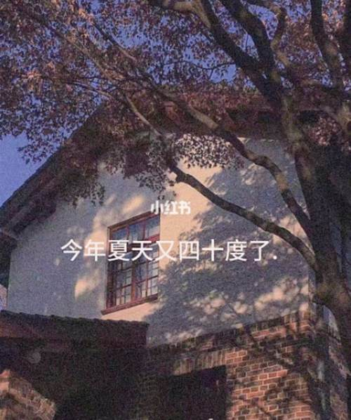 今年夏天又四十度了什么意思_WWW.XUNWANGBA.COM