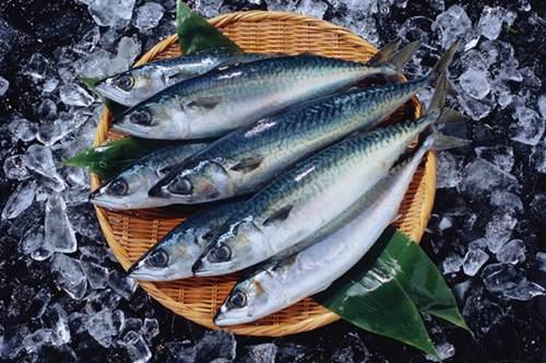 疫情期间大连海鲜能吃吗 现在大连的海鲜还能吃吗_WWW.XUNWANGBA.COM