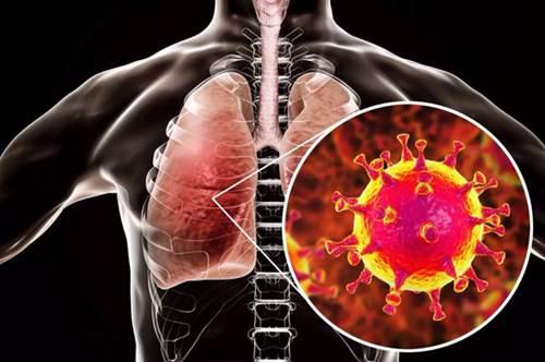 美疾控中心承认疫情主要来自欧洲 美国首次承认疫情主要来自欧洲_WWW.XUNWANGBA.COM