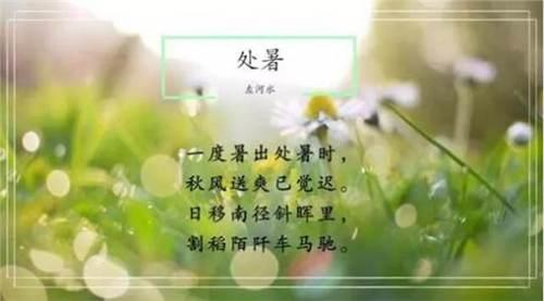 今日处暑 今日处暑什么时候 今日处暑什么意思_WWW.XUNWANGBA.COM