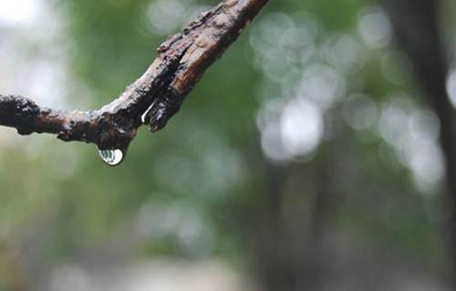 长江中下游将进入高温少雨模式 长江中下游哪些地区进入高温少雨模式_WWW.XUNWANGBA.COM