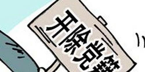 河北省原副省长张和被开除党籍_WWW.XUNWANGBA.COM