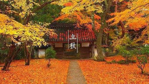 立秋下雨有什么说法 立秋的时候下雨好还是不下雨好_WWW.XUNWANGBA.COM