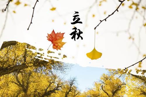 立秋的时候有哪些水果成熟了 立秋的水果有哪些_WWW.XUNWANGBA.COM
