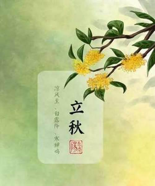 立秋吃什么食物养生 立秋吃什么食物最好_WWW.XUNWANGBA.COM