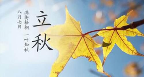 立秋之后可以种些什么菜 立秋适合种什么农作物_WWW.XUNWANGBA.COM